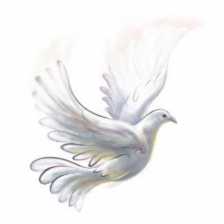 鳩の磁石 写真彫刻マグネット