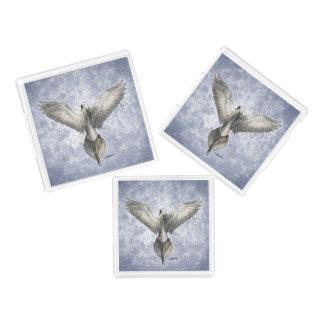 鳩の飛行中に自然の引くこと アクリルトレー