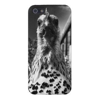 鶏のiPhoneの場合 iPhone 5 カバー