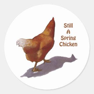 鶏: より古くなること: 春鶏 ラウンドシール