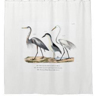 鷲のシャワー・カーテン シャワーカーテン