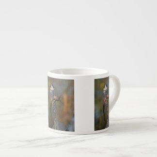 鷲 エスプレッソカップ