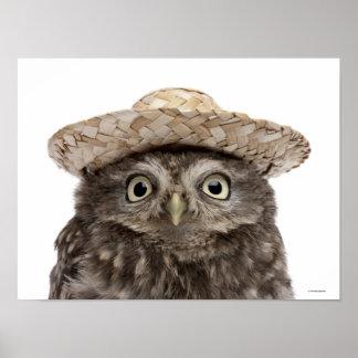 麦わら帽子- Atheneのnoctua --を身に着けているコキンメフクロウ ポスター