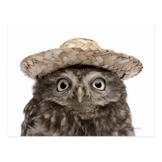 麦わら帽子- Atheneのnoctua --を身に着けているコキンメフクロウ ポストカード