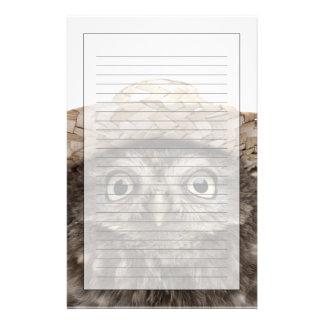 麦わら帽子- Atheneのnoctua --を身に着けているコキンメフクロウ 便箋