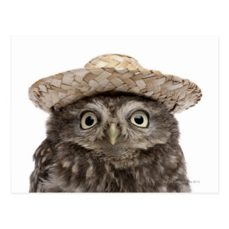 麦わら帽子- Atheneのnoctua --を身に着けているコキンメフクロウ 葉書き