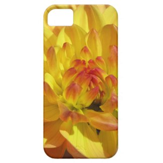 黄橙色のダリアの花 Case-Mate iPhone 5 ケース