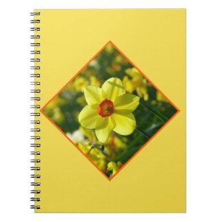 黄橙色のラッパスイセン02.2.2o ノートブック