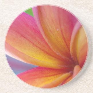 黄橙色の濃いピンクの熱帯プルメリアの花 コースター
