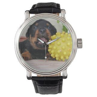 黄色いおもちゃを持つかわいいロットワイラーの子犬 腕時計