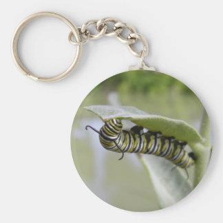 黄色いつばめの尾蝶幼虫のkeychain キーホルダー