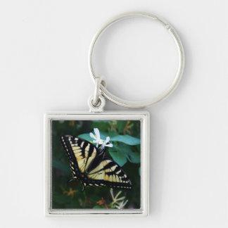 黄色いアゲハチョウ キーホルダー
