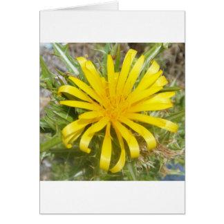 黄色いアザミ カード
