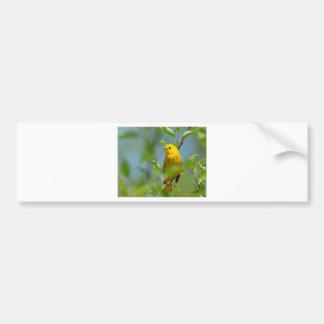 黄色いカナリア バンパーステッカー