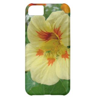 黄色いキンレンカBlosom iPhone5Cケース