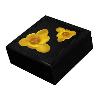 黄色いクロッカスのギフト用の箱 ギフトボックス