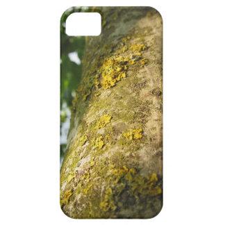 黄色いコケの菌類が付いているクルミの木の幹 iPhone SE/5/5s ケース