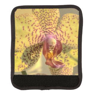 黄色いコチョウランの紫色の点 ラゲッジ ハンドルラップ