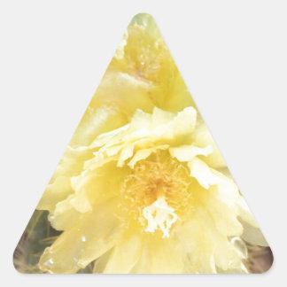 黄色いサボテンの花 三角形シール