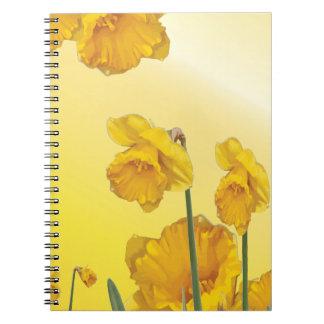 黄色いスイセンのラッパスイセンのレトロのヴィンテージ ノートブック