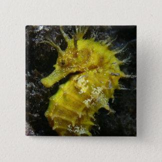 黄色いタツノオトシゴ|の海馬Guttulatus 5.1cm 正方形バッジ