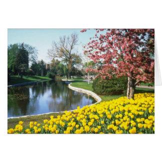 黄色いチューリップのフェスティバル、五番街、オタワの花 カード