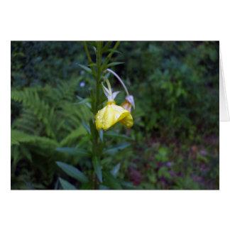 黄色いチューリップブランクカードの雨低下 カード