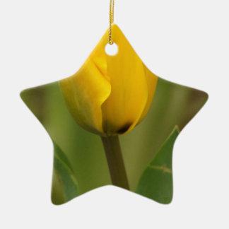 黄色いチューリップ 陶器製星型オーナメント