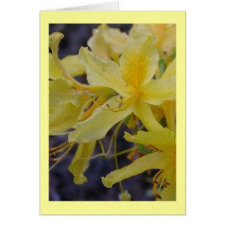 黄色いツツジの花の挨拶状 カード