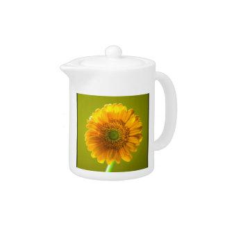 黄色いデイジーのガーベラの花