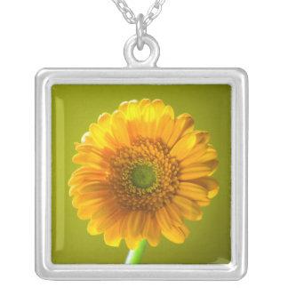 黄色いデイジーのガーベラの花 シルバープレートネックレス