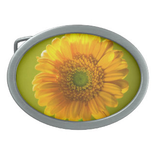 黄色いデイジーのガーベラの花 卵形バックル