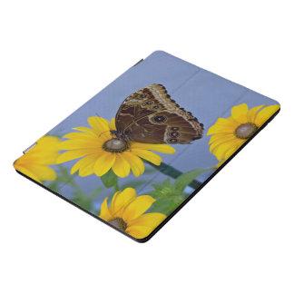 黄色いデイジーのバックアイズの蝶 iPad PROカバー