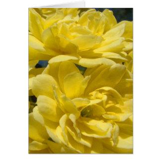 黄色いバンクシアバラが付いている挨拶状 カード