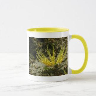 黄色いヒイラギナンテンによってはマグが開花します マグカップ