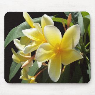 黄色いプルメリアの花のマウスパッド マウスパッド