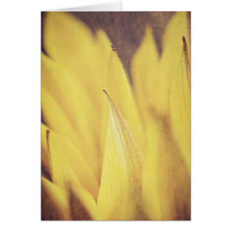 黄色いマクロ花の花びら… カード