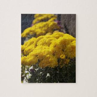 黄色いマリーゴールドは日光で浴します ジグソーパズル