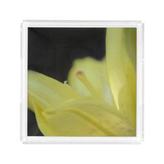黄色いユリ アクリルトレー