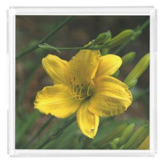 黄色いユリ、香水の皿 アクリルトレー