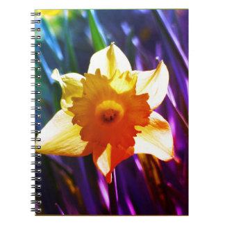 黄色いラッパスイセン03.0.g.F ノートブック
