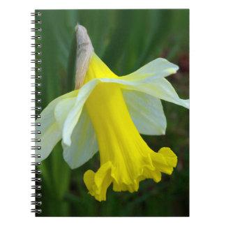 黄色いラッパスイセン ノートブック
