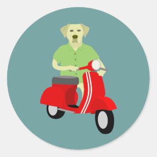 黄色いラブラドル・レトリーバー犬 ラウンドシール