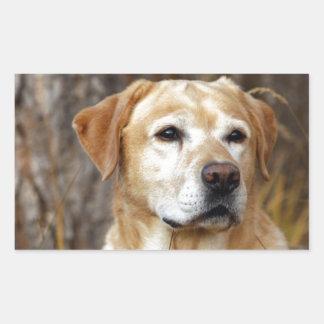 黄色いラブラドル・レトリーバー犬 長方形シール