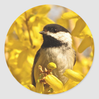 黄色いレンギョウの《鳥》アメリカゴガラの鳥によってはステッカーが開花します ラウンドシール