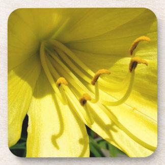 黄色いワスレグサのコルクのコースター コースター