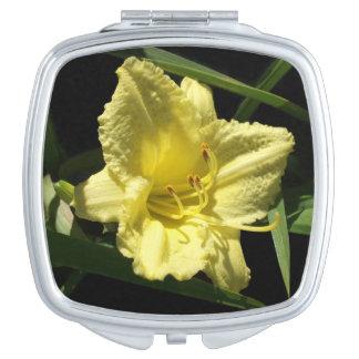 黄色いワスレグサの花のHemerocallis