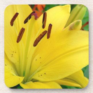 黄色いワスレグサ コースター
