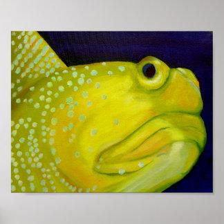 黄色い夜警のハゼの魚 ポスター