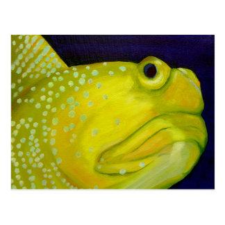 黄色い夜警のハゼの魚 ポストカード